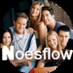 noesflow