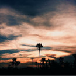 _photographys
