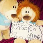 uniao_toplove