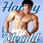 happymeadd