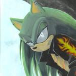 scourgethehedgehog