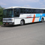 machadobus1