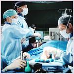greyssanatomy