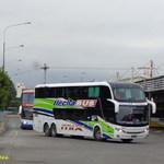 turco966
