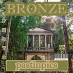 bronzessilvers
